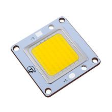 Good quality led chip 20w 30w 50w 100w 200w bridgelux led things