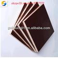 Ponteggio bordo di legno/pannello