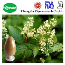 tripterygium wilfordii extract powder/tripterygium wilfordii p.e./tripterygium wilfordii root extract
