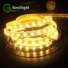 Wholesale RGB Flexible Led Strip Lighting SMD 5050 Indoor OutDoor 12V