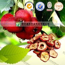 NATURAL herbal medicine Crataegus pinnatifida Bunge from China supplier