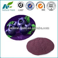 GMP manufacturer acai extract powder/ brazilian acai P.E.