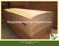 0.2 mm okoume de madera de madera para enchapado chapas AB cara de alto grado de chapa