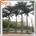 artificial roystonea regia folhas de palmeira