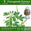 Medical Grade Fenugreek Seed Extract(4-hydroxyisoleucine),Common Fenugreek Seed P.E.
