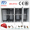 TD-19712 CE approved full automatic large egg hatching equipment for quail