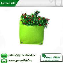 Muro vivente fioriera, verde verticale piantatore giardino parete modulare