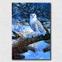 Wholesale animal canvas art printing beautiful white owl painting