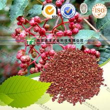 Natural herbal medicine Chinese prickly ash