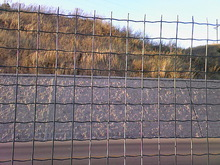 euro fence meshes/euro fence wire mesh