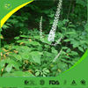 Factory supply 100% Pure top quality black cohosh extract (no addition)