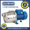 /product-gs/2-elestar-jsl-garden-pitcher-watering-pump-1848779869.html