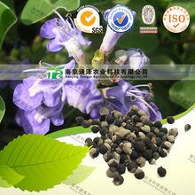 Female menopause medicine Vitex trifolia