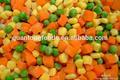 temporada de conservas vegetales mezclados en salmuera