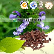 100% natural herbal organic raw material Selfheal spike