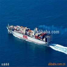 Favorable et raisonnable container service d'expédition de la chine à crochet de hollande, Pays - bas