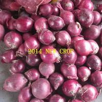 5-12cm different size fresh red onion,2014crop