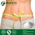 Sport und Bodybuilding Inhaltsstoffen für Nahrungsmittel l- carnitin pulver