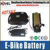2014 Hot Sale E-bike E-scooter battery 12V 24V 100Ah Lifepo4 rechargeable battery pack