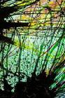 Glass painting patterns art
