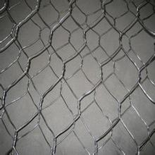 Anping Supplier Galvanized Hexagonal Wire Mesh