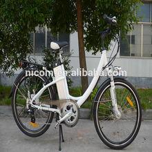 electric scooter 25 km TDF02Z