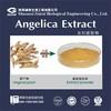 ligustilides powder 1% 10:1 dong quai extract