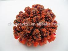 corallo nero grezzo