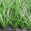 mini synthetic turf artificial grass