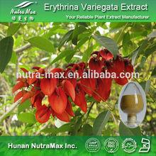 100% Natural Erythrina Variegata Extract,Erythrina Variegata Extract Powder,Erythrina Variegata Extract Supplier 4:1~20:1