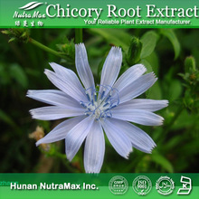 GMP Standard Manufacturer Supply chicory root extract inulin,Cichorium intybus
