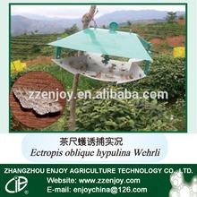 Pheromone in ultrasonic pest repeller