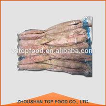 frozen cooked skipjack tuna loin