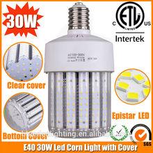 Reasonable prices high brightness 30W led bulb lamp e27