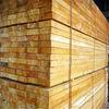 eucalyptus lumber and timber