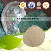 100% Pure Natural Medicinal Material Concha haliotidis