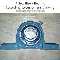 TR Pillow Block Bearing