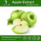Food Grade Supplement Green Apple Powder/ Natural Green Apple Peel Extract