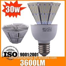 Parking Lot Bulb 12v led light garden spot light 30w