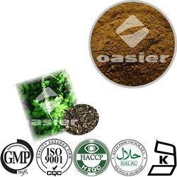 High Quality Black Cohosh Extract 2.5% Triterpene Glycosides