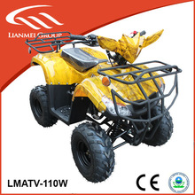 buggy from china 110cc atv for adults with EPA CE approved