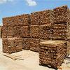 Hemlock, pine, spruce, China fir timber supplier