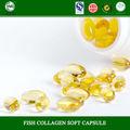 Proteína colágeno cápsula para Anti envelhecimento e beleza fabricante china