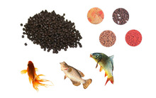 China Best quality Fully automatic Fish Feed Extrusion Machines