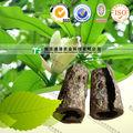 100% pura medicina di erbe magnoliae officinalis corteccia