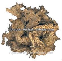 Triterpene glycosides cimicifuga racemosa 2.5%, 5% Black Cohosh Extract