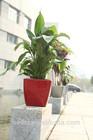 decorative plastic plant pots,plastic flowerpots,square plant pots plastic