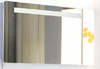 Sansheng high quality mirror cabinet with T5 lamp