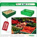 di frutta di plastica e verdura casse
