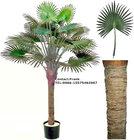 SJ 160CM Mini artificial Fan Palm tree for house decoration